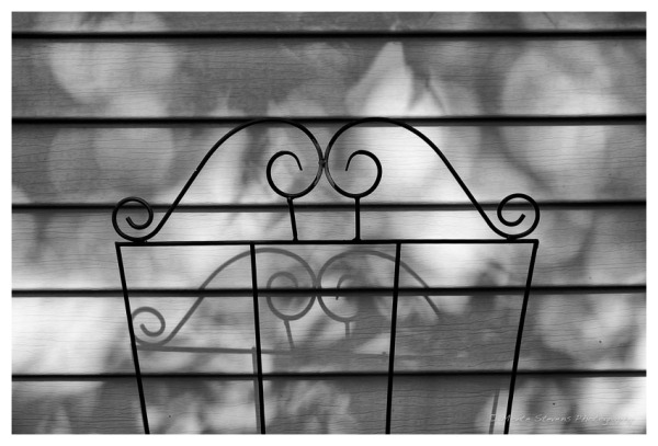 Trellis and Shadow