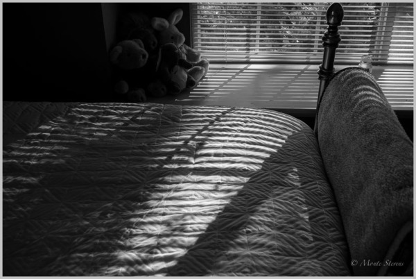 Morning Shadows
