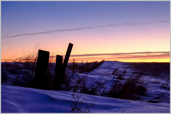 Sunrise Along the Fence