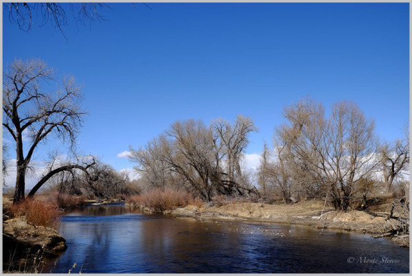 Poudre River at the ELC
