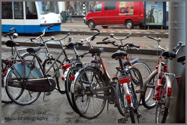 bicycles | amsterdam