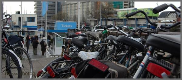 bicycles | amsterdam