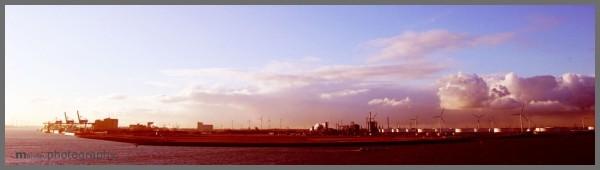 morning | industrial area, rotterdam