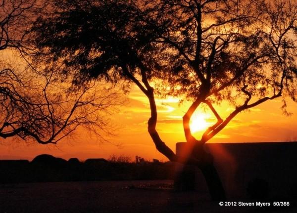 Sunset 50/366