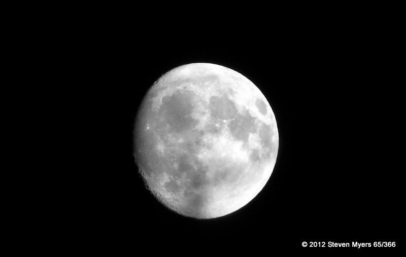 65/366 Luna Shine