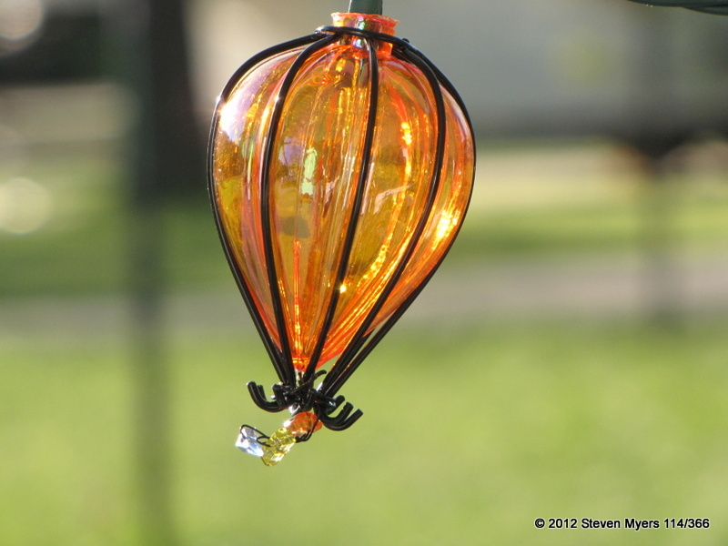 114/366 Light Globe