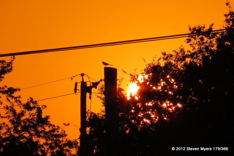 179/366 Urban Sunset Sentinel