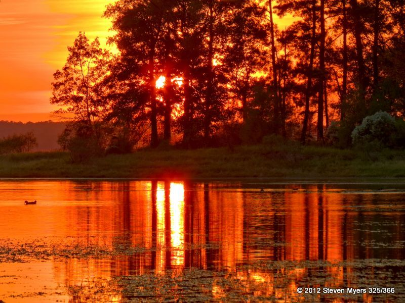 325/366 Sunset in Louisiana