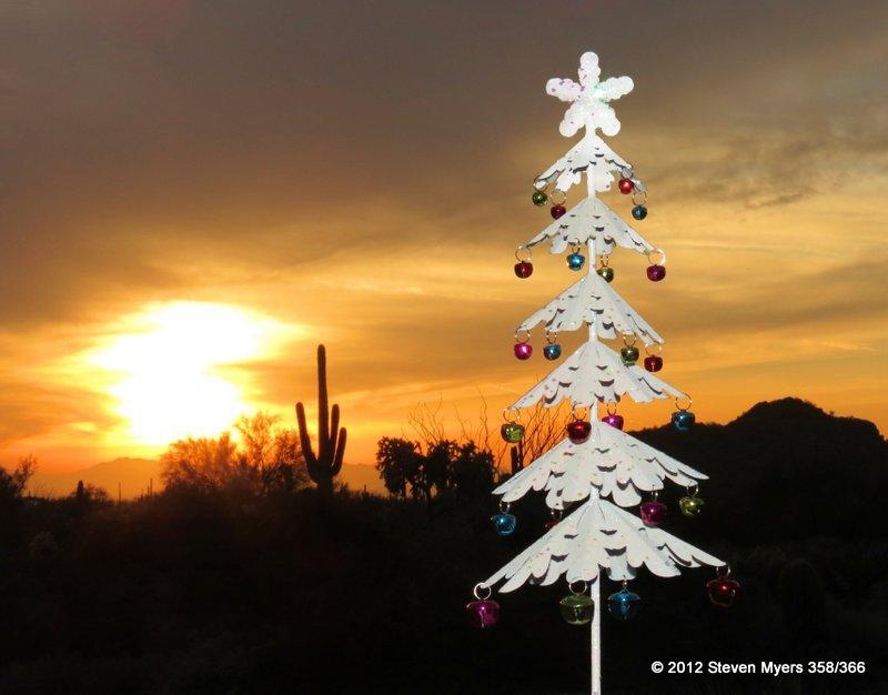 358/366 Christmas Tree in the Desert