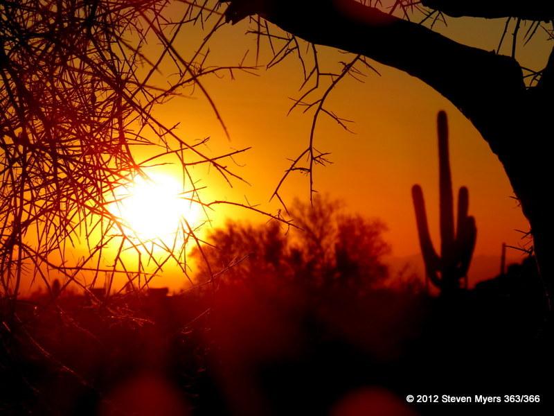 363/366 Sunset View