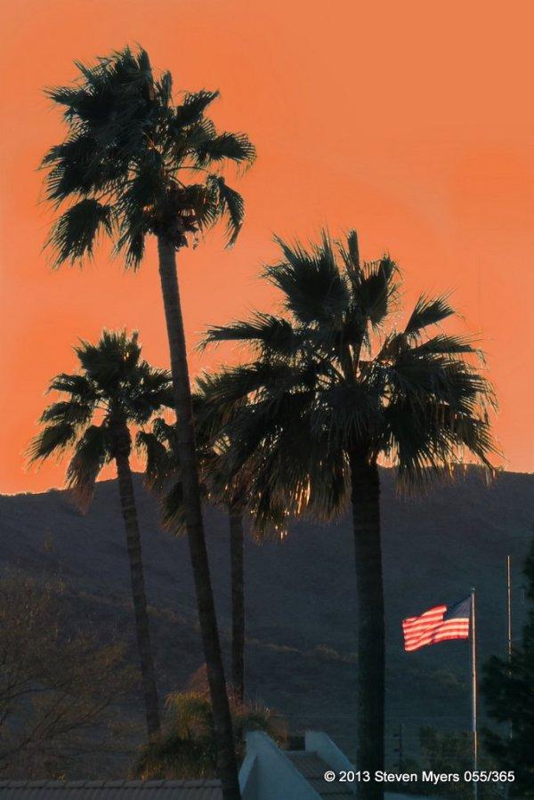 055/365 Flag Sunset