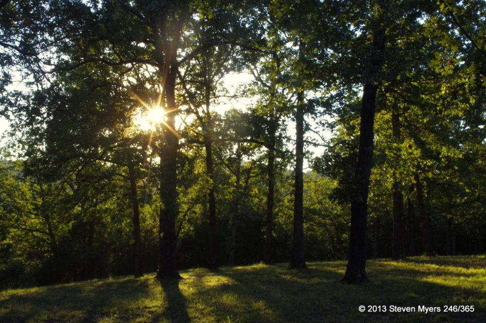 247/365 Sunlight