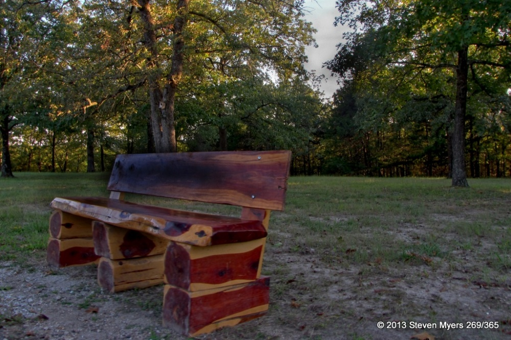 269/365 Vacant Bench