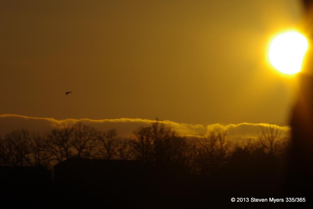 335/365 Towards the Sun