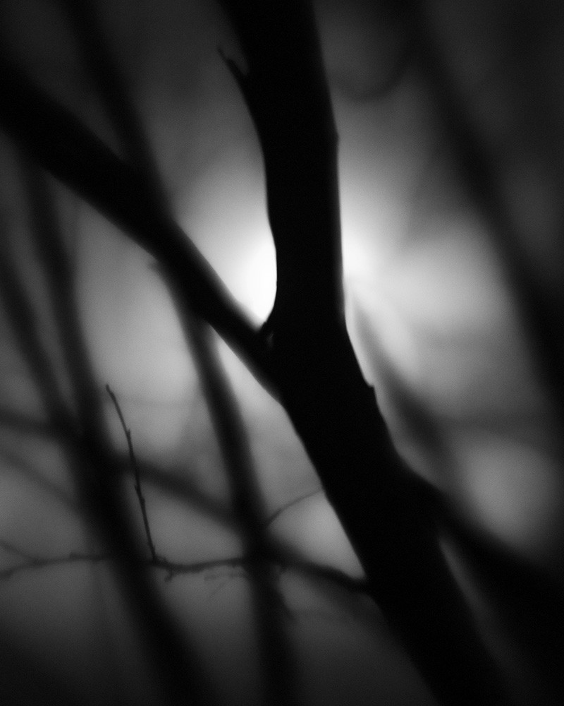 Foggy Night #1