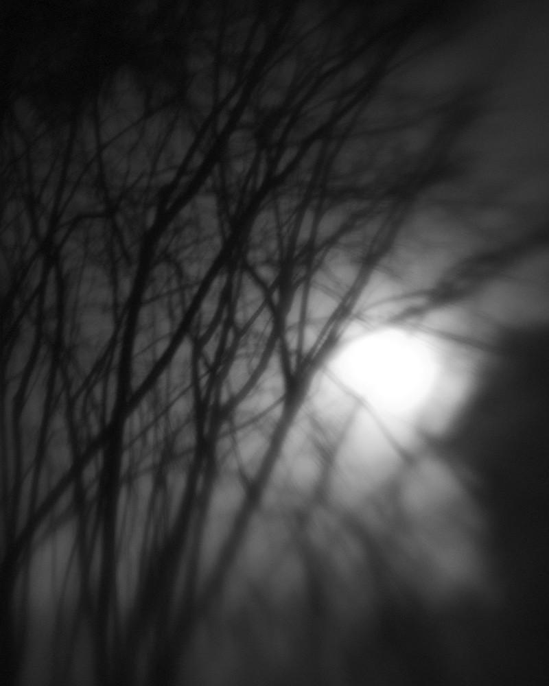 Foggy Night #2`
