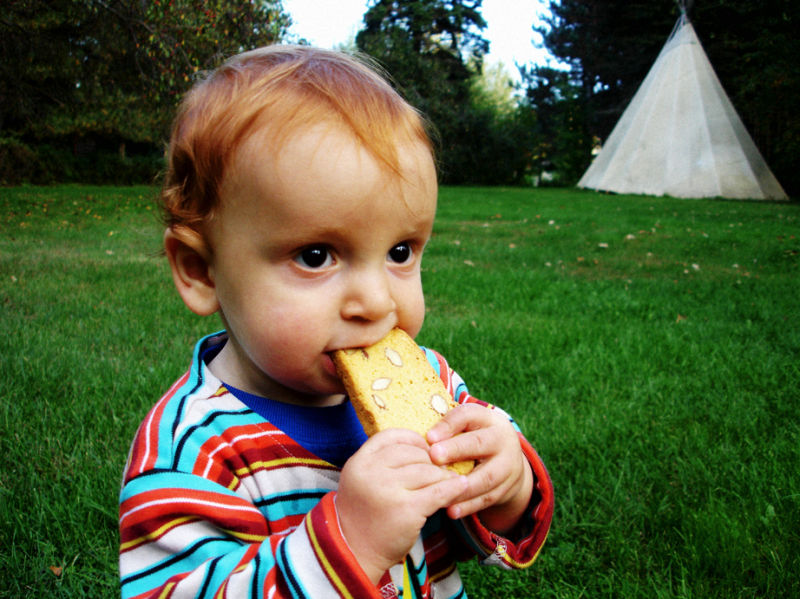 Biscotti by the teepee