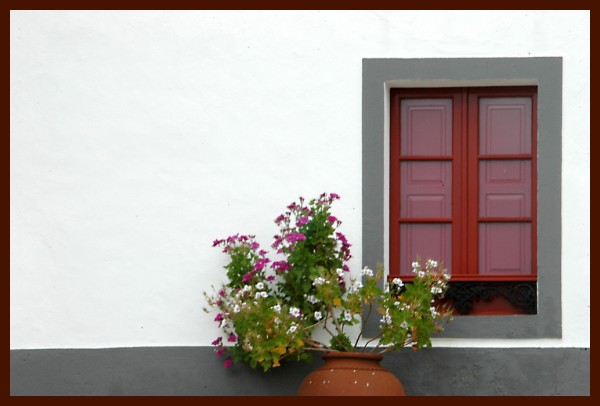 FLOWERS AT A WINDOW