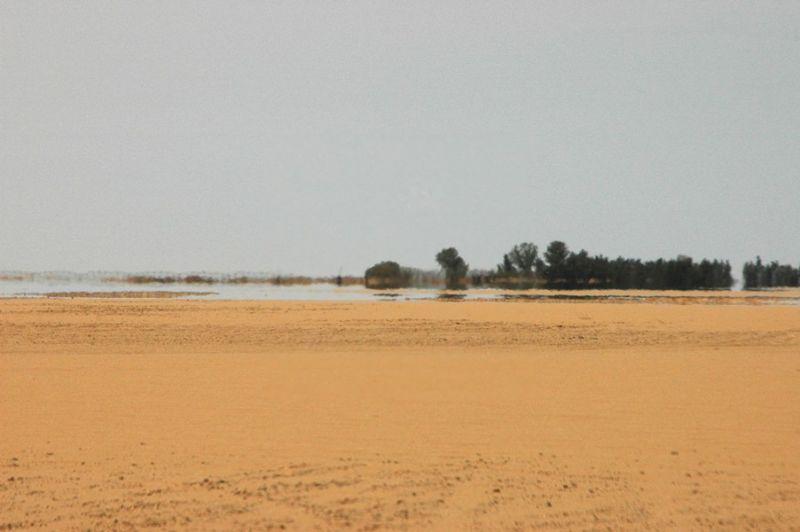 DESERT-MIRAGE-3