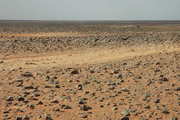 A STONY LANDSCAPE