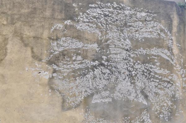 A STRANGE GRAFFITI