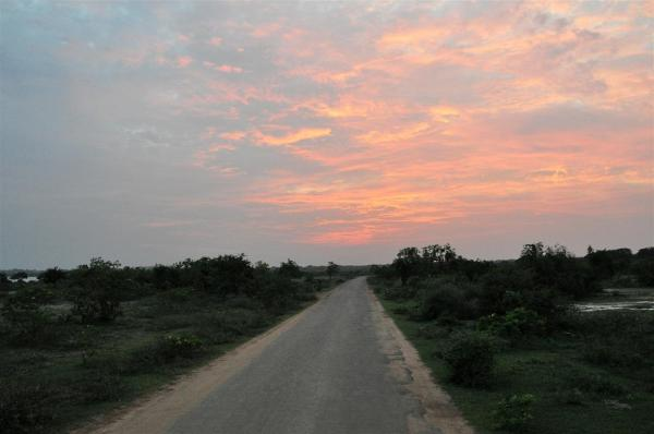 YALA NATIONAL PARK-10