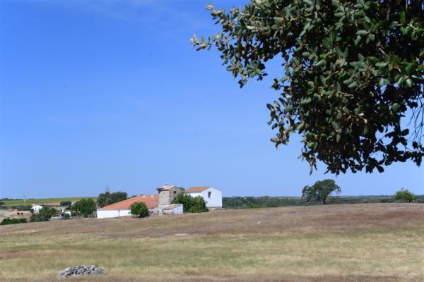 A FARM HOUSING