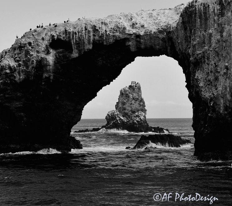 Pelican Bridge
