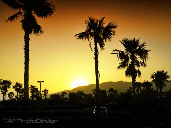 Sunset Central