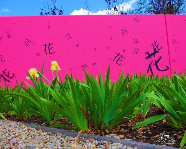Springtime Japan