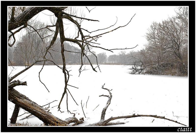 Washington Park,Chicago,Winter