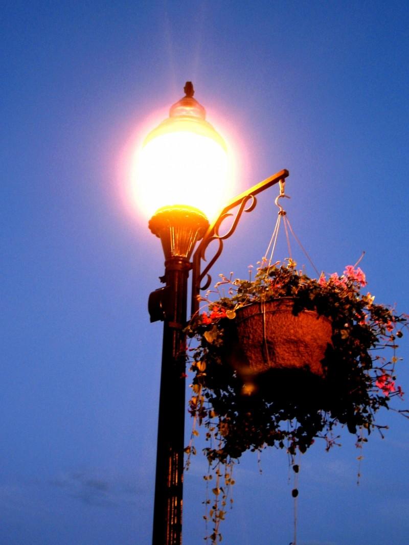 Nightlight 1