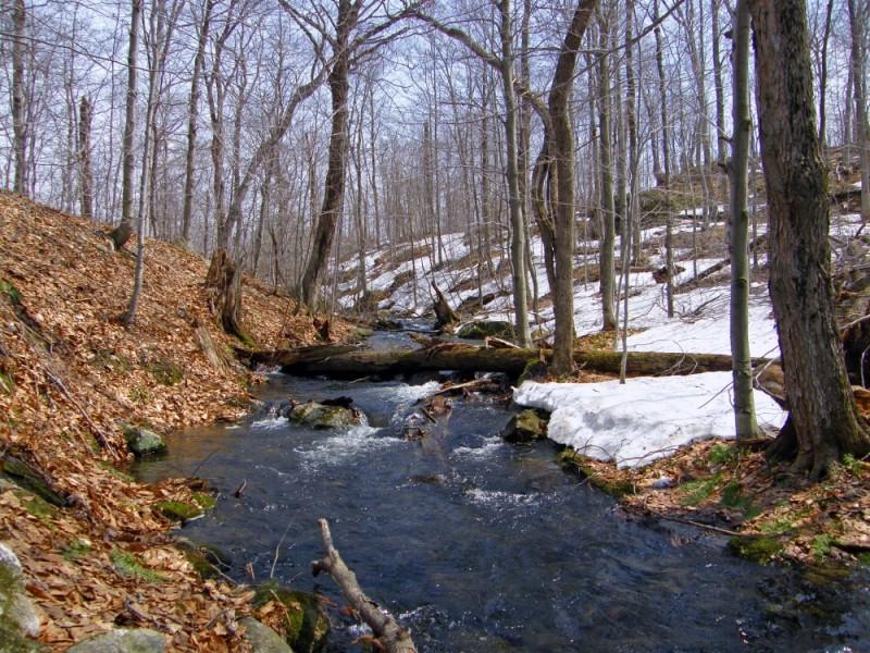 a stream capture