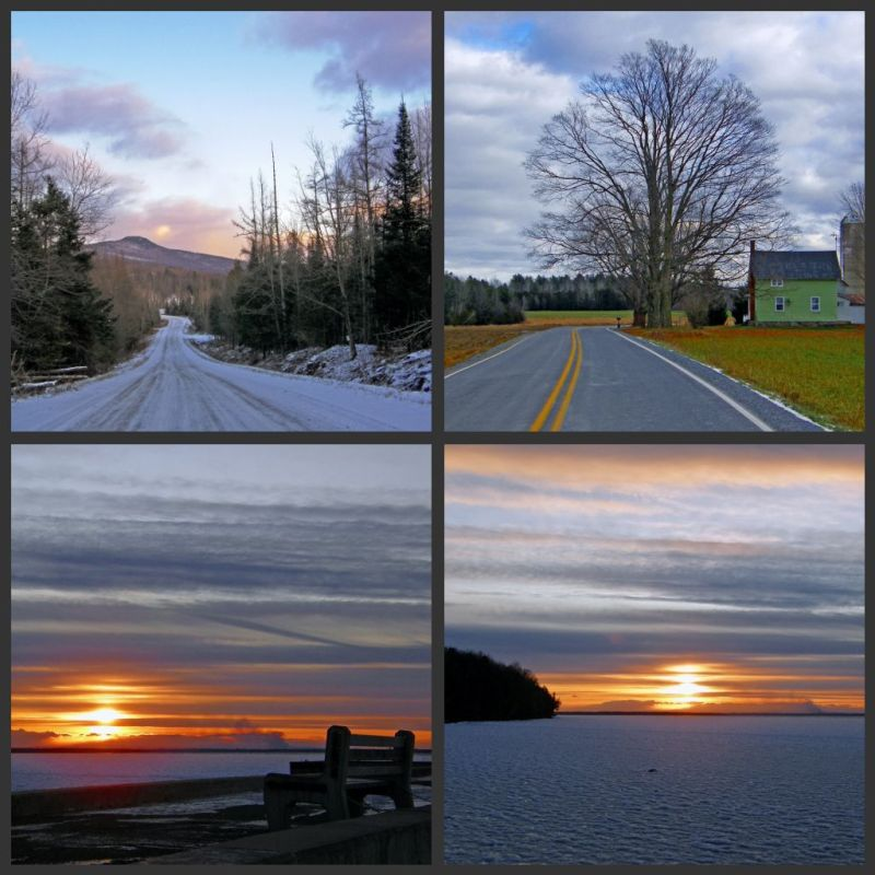 collage of winter
