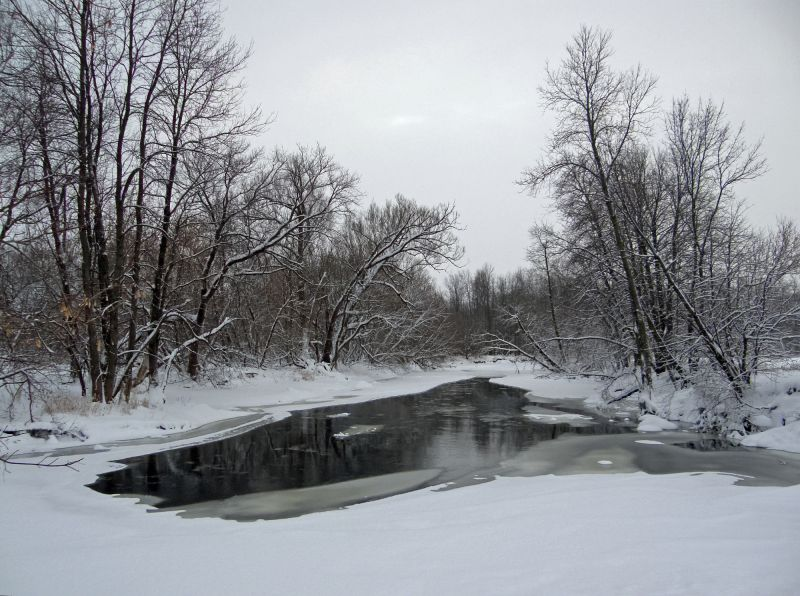 A winter view