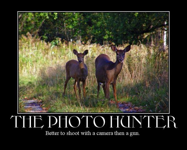 a deers capture