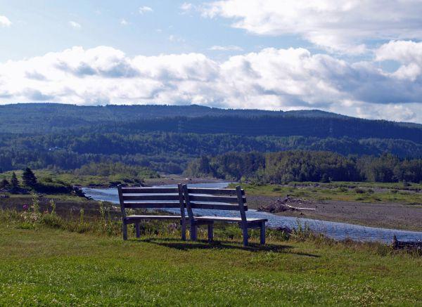 a view