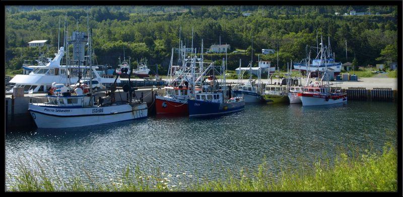 a marina capture