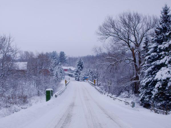 a winter captuure