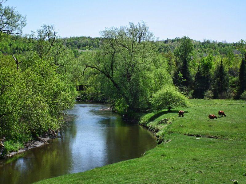 river capture