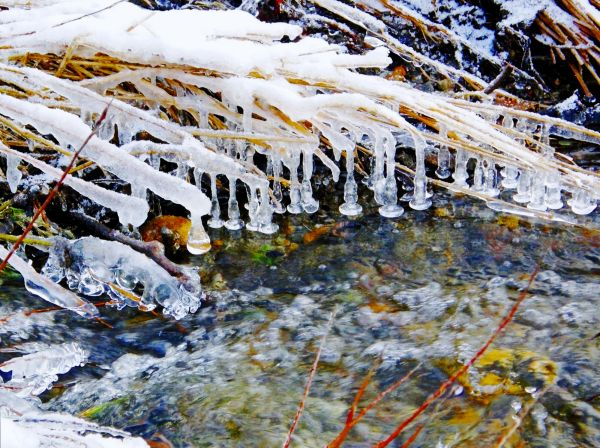 ice capture