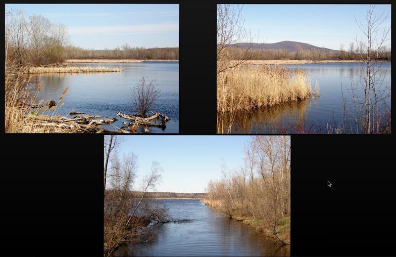 lake capture