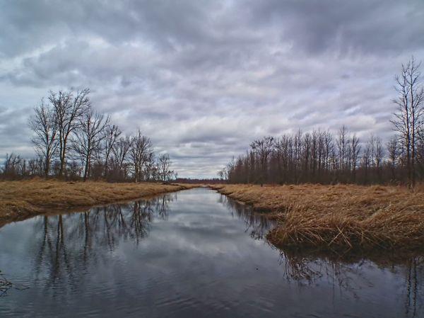 a creek capture