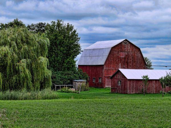 a farm capture
