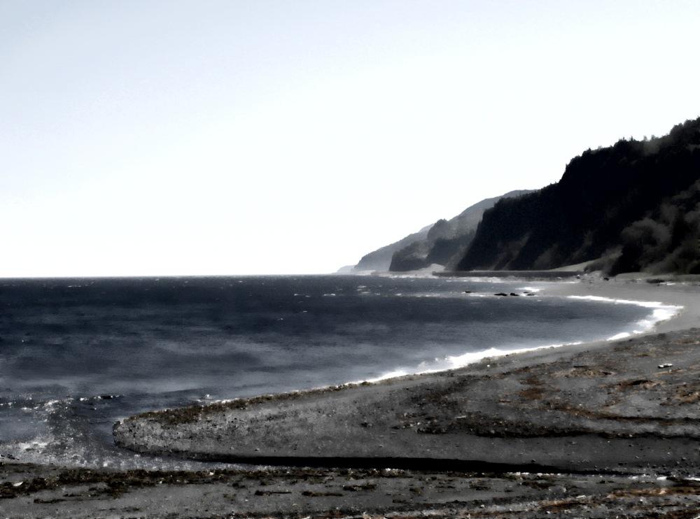 a shore cature