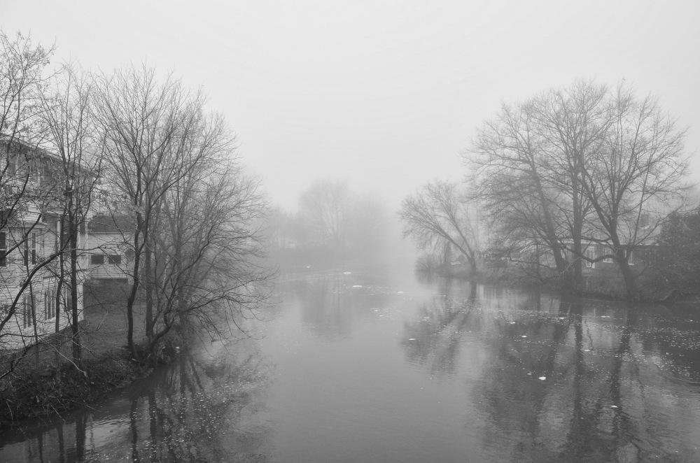 a fog capture