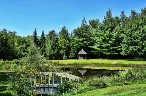 pond capture