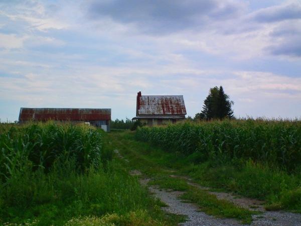 a homestead capture