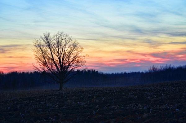 sunset capture