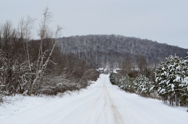 Country scene in winter